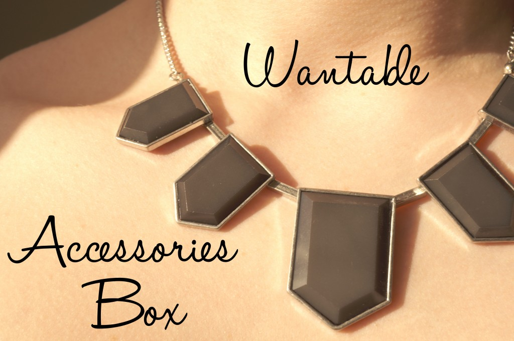 Wantable Accessories Subscription Box Review