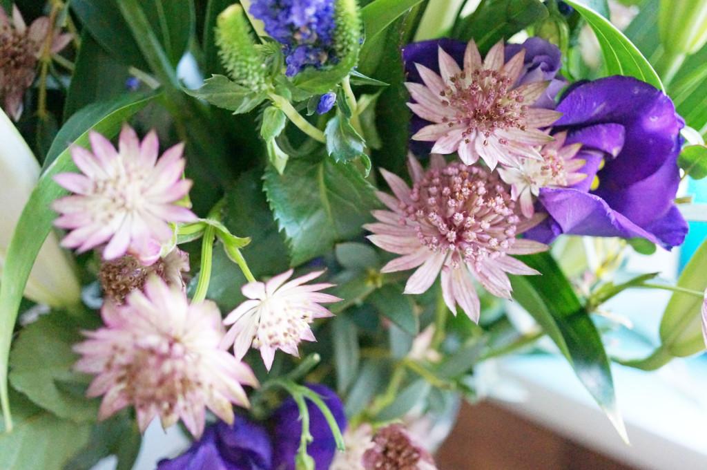 appleyard-flowers
