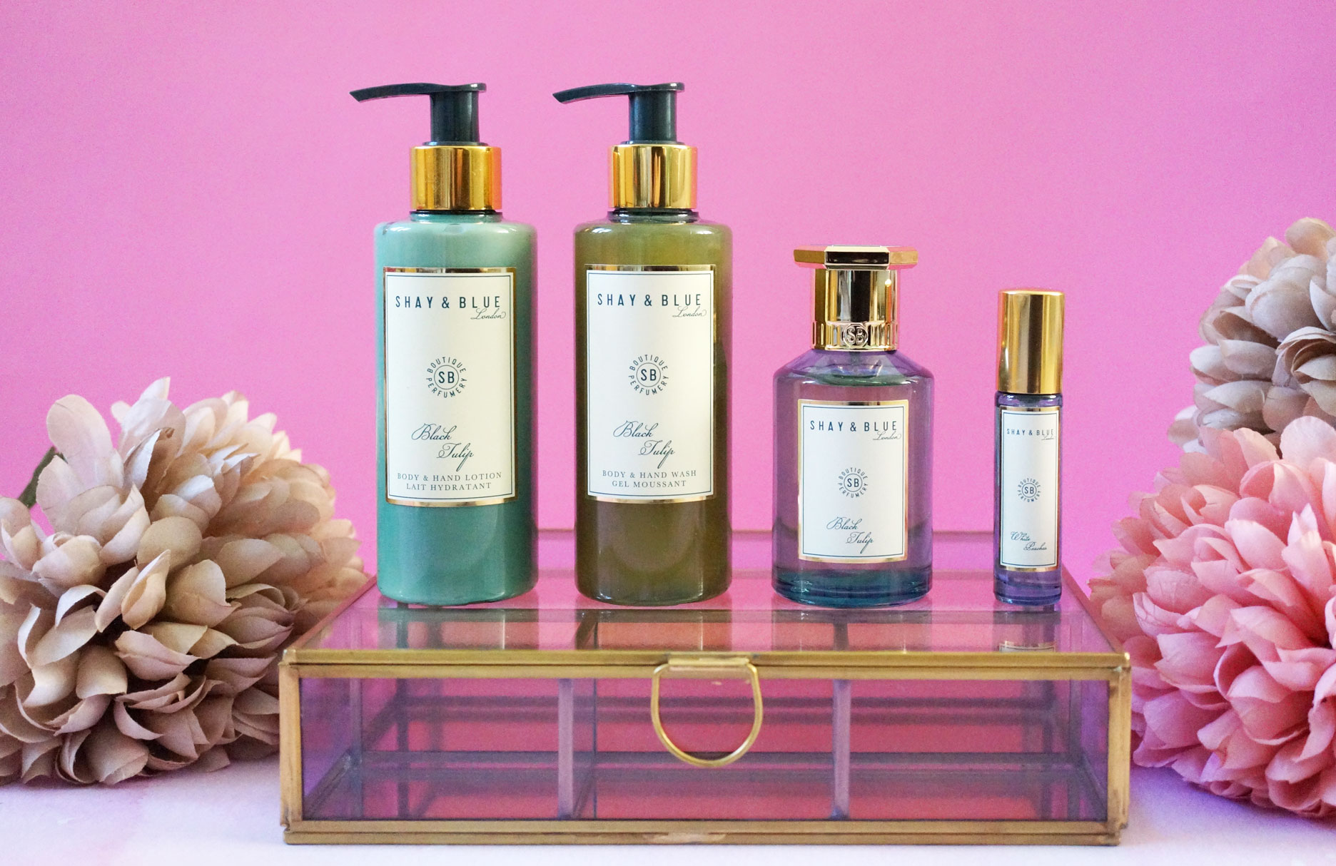 Amazing Shay & Blue QVC TSV Upcoming Collection!